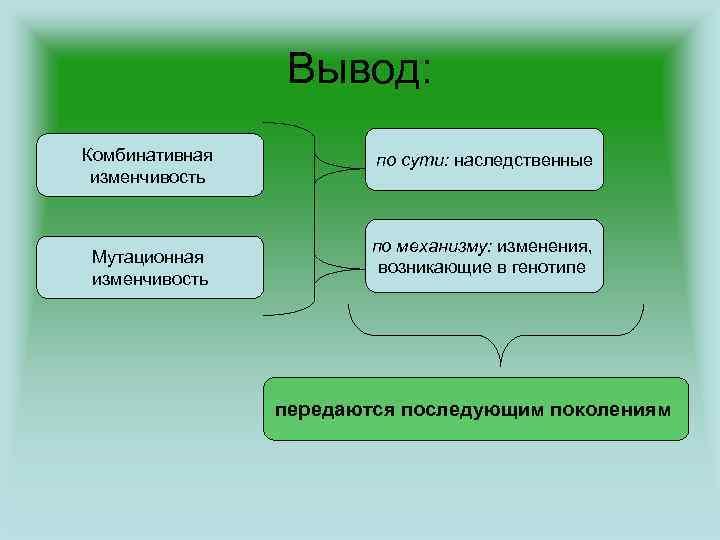 Вывод: Комбинативная изменчивость Мутационная изменчивость по сути: наследственные по механизму: изменения, возникающие в генотипе