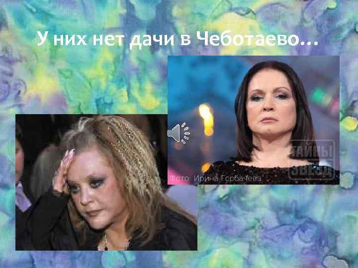 У них нет дачи в Чеботаево…