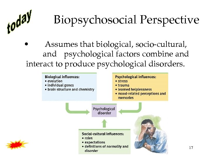 Biopsychosocial Perspective • Assumes that biological, socio-cultural, and psychological factors combine and interact to