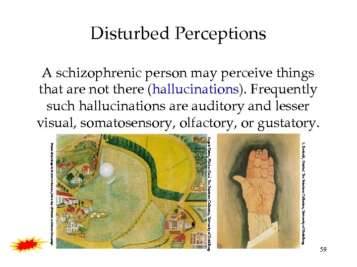 Disturbed Perceptions A schizophrenic person may perceive things that are not there (hallucinations). Frequently
