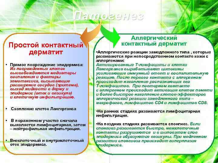Патогенез Простой контактный дерматит • Прямое повреждение эпидермиса: Из поврежденных клеток высвобождаются медиаторы воспаления