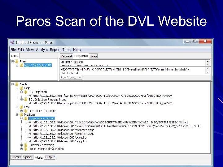Paros Scan of the DVL Website