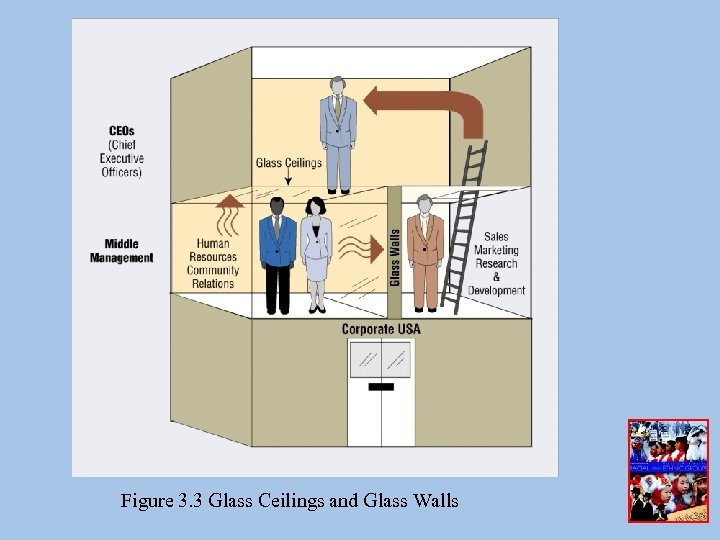 Figure 3. 3 Glass Ceilings and Glass Walls