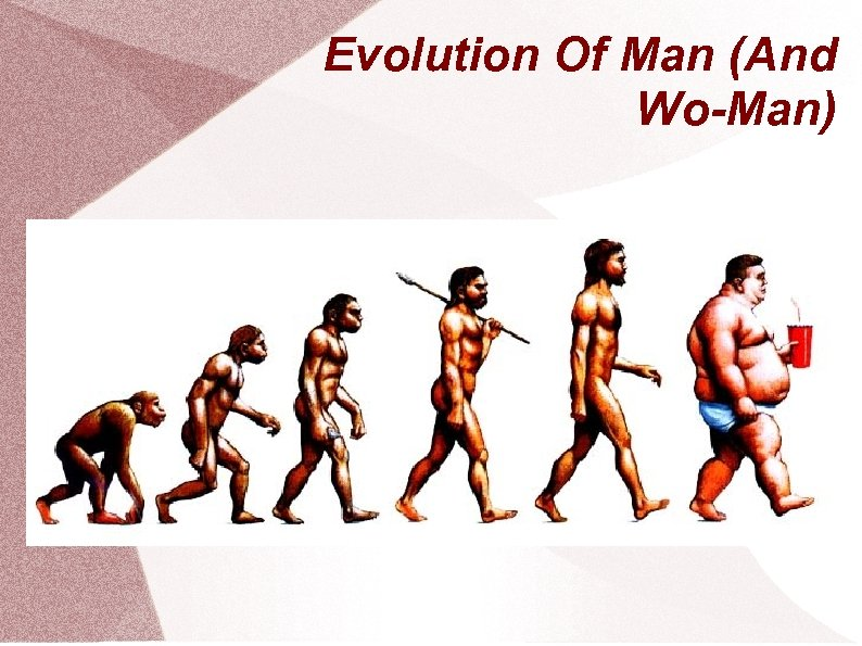 Evolution Of Man (And Wo-Man)