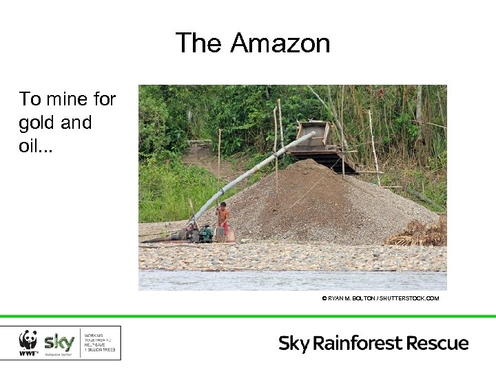 The Amazon To mine for gold and oil. . . © RYAN M. BOLTON