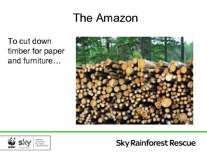 The Amazon To cut down timber for paper and furniture…