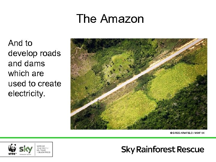 The Amazon And to develop roads and dams which are used to create electricity.