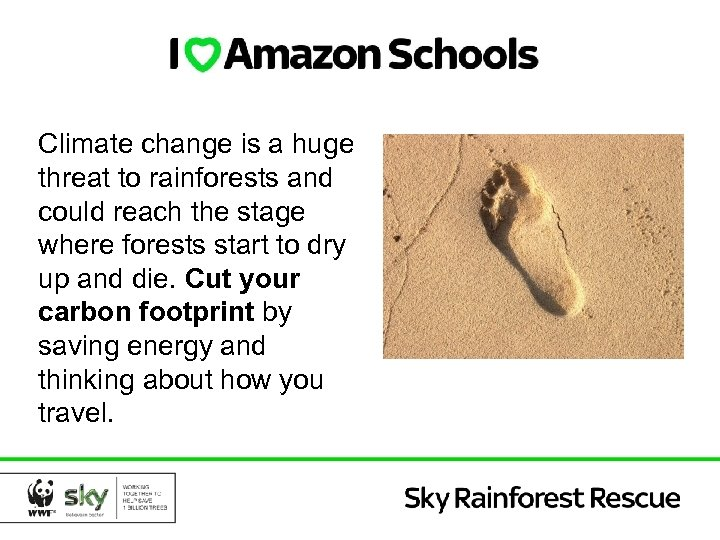 Climate change is a huge threat to rainforests and could reach the stage where