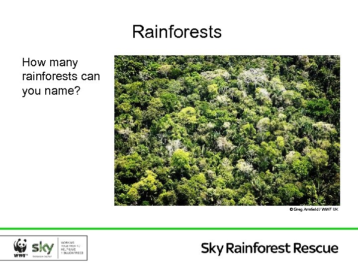 Rainforests How many rainforests can you name? © Greg Armfield / WWF UK