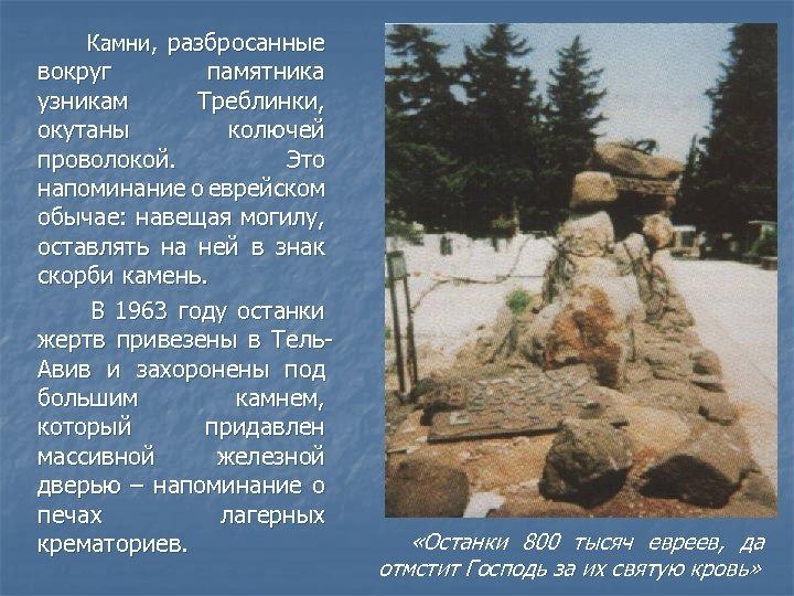 Камни, разбросанные вокруг памятника узникам Треблинки, окутаны колючей проволокой. Это напоминание о еврейском