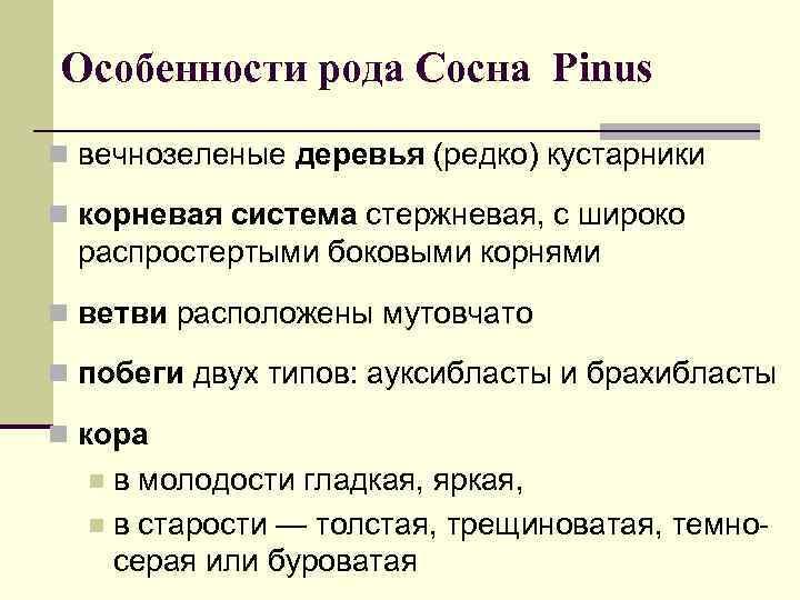 Особенности рода Сосна Pinus n вечнозеленые деревья (редко) кустарники n корневая система стержневая, с