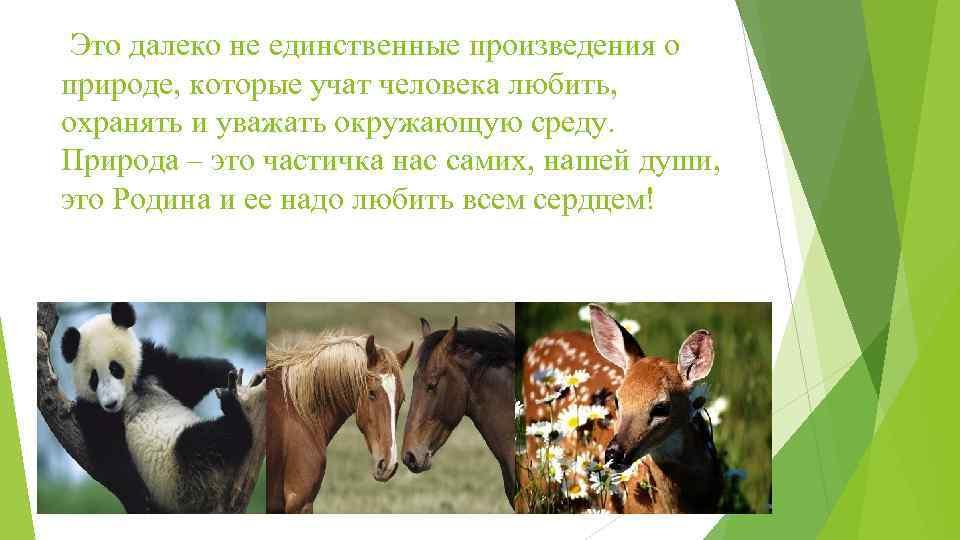 Это далеко не единственные произведения о природе, которые учат человека любить, охранять и уважать