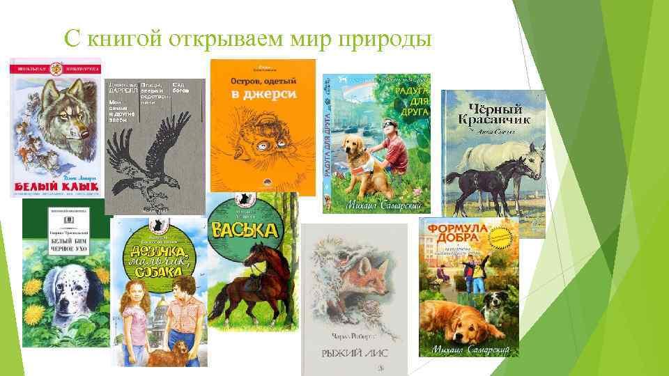 С книгой открываем мир природы