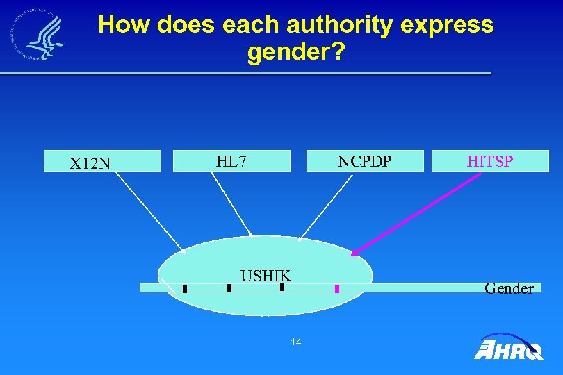 How does each authority express gender? X 12 N HL 7 NCPDP USHIK 14