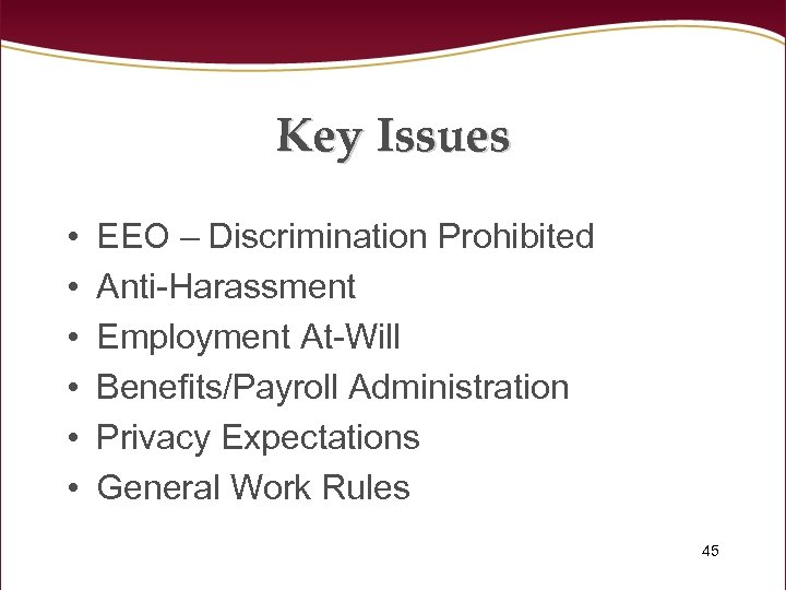 Key Issues • • • EEO – Discrimination Prohibited Anti-Harassment Employment At-Will Benefits/Payroll Administration