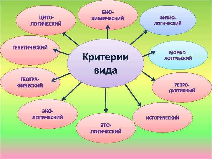 Критерии вида