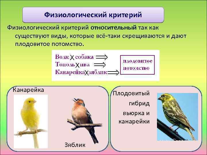 Физиологический критерий относительный так как существуют виды, которые всё-таки скрещиваются и дают плодовитое потомство.