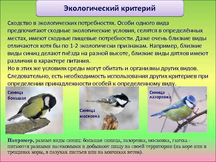 Экологический критерий Сходство в экологических потребностях. Особи одного вида предпочитают сходные экологические условия, селятся