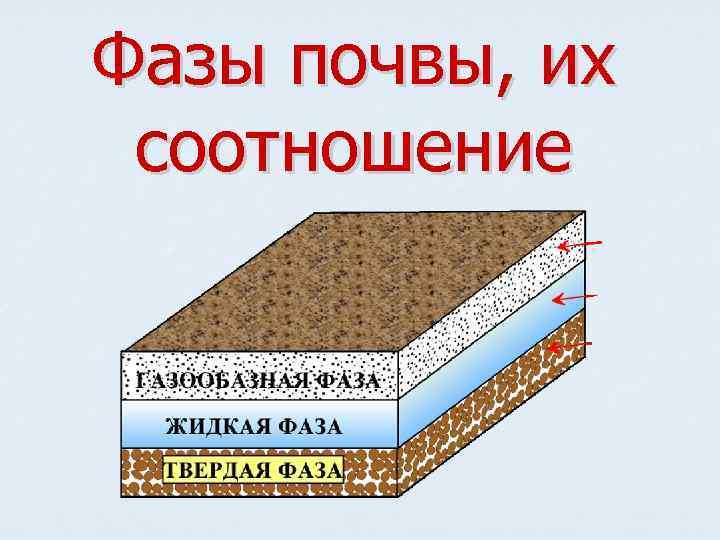 Фазы почвы, их соотношение
