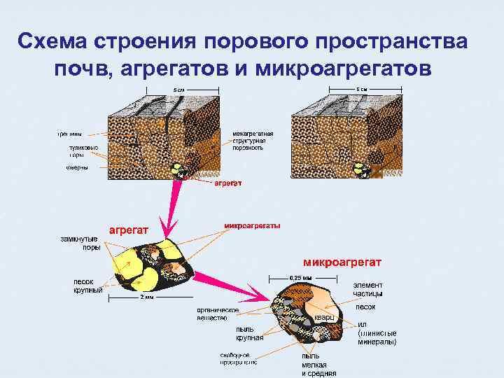 Схема строения порового пространства почв, агрегатов и микроагрегатов
