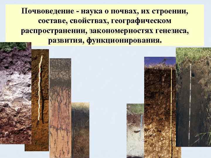 Почвоведение - наука о почвах, их строении, составе, свойствах, географическом распространении, закономерностях генезиса, развития,