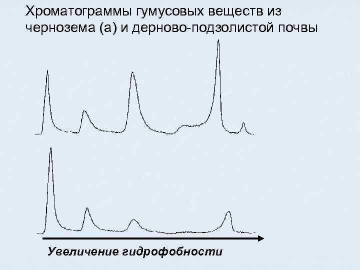 Хроматограммы гумусовых веществ из чернозема (а) и дерново-подзолистой почвы Увеличение гидрофобности
