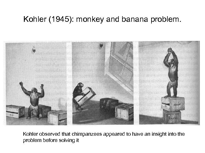 Problem Solving Views of Problem solving