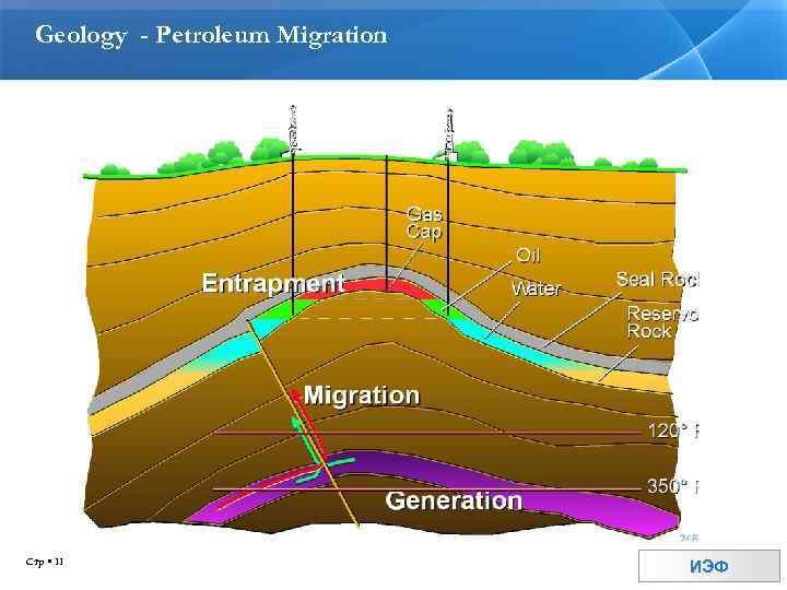 Geology - Petroleum Migration Стр 11 ИЭФ