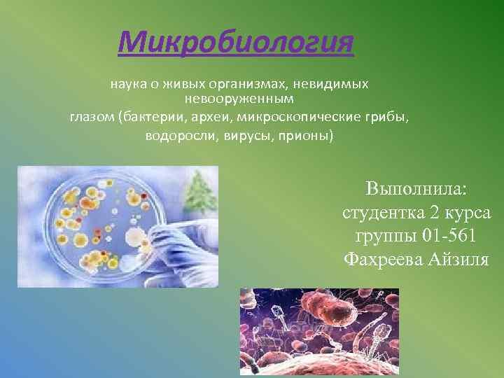 Микробиология наука о живых организмах, невидимых невооруженным глазом (бактерии, археи, микроскопические грибы, водоросли, вирусы,