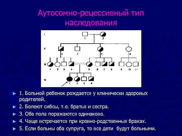 Аутосомно-рецессивный тип наследования ► ► ► 1. Больной ребенок рождается у клинически здоровых родителей.