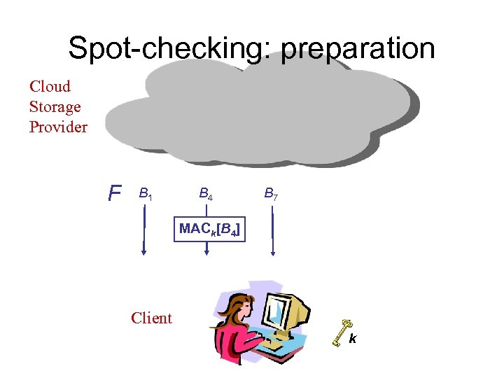 Spot-checking: preparation Cloud Storage Provider F B 1 B 4 B 7 MACk[B 4]