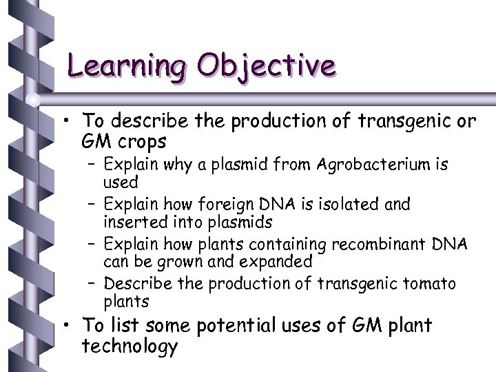 Learning Objective • To describe the production of transgenic or GM crops – Explain