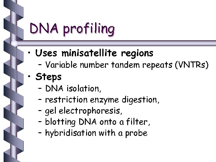 DNA profiling • Uses minisatellite regions – Variable number tandem repeats (VNTRs) • Steps