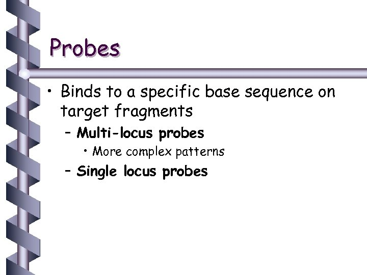 Probes • Binds to a specific base sequence on target fragments – Multi-locus probes