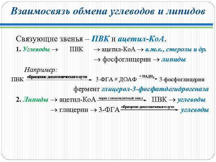 Взаимосвязь обмена углеводов и липидов Связующие звенья – ПВК и ацетил-Ко. А. ПВК ацетил-Ко.