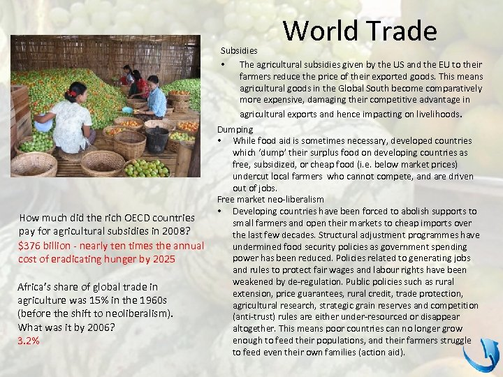 World Trade Subsidies • The agricultural subsidies given by the US and the EU