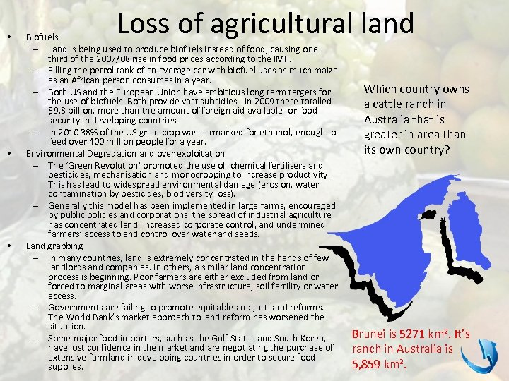 • • • Loss of agricultural land Biofuels – Land is being used
