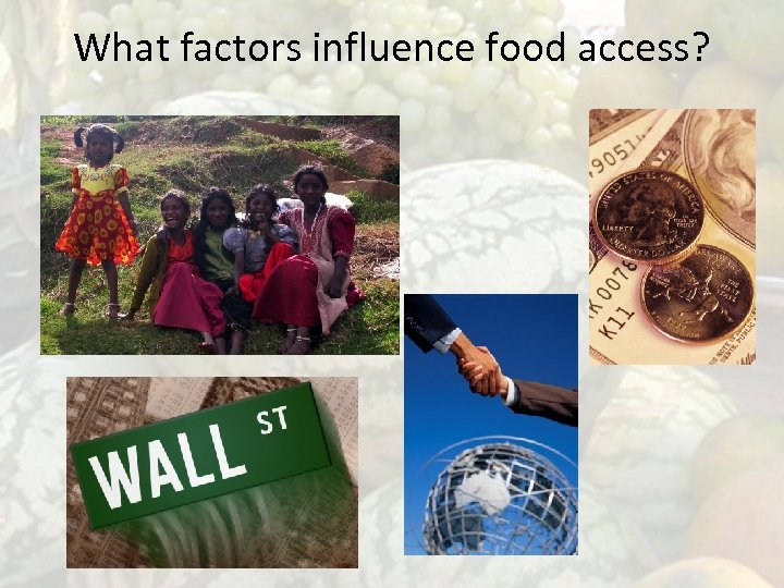 What factors influence food access?