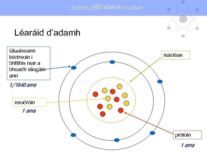 Science Differentiation in action Léaráid d'adamh Gluaiseann leictreoin i bhfithis mar a bheadh sliogáin