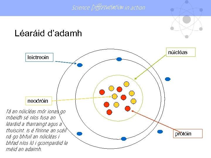Science Differentiation in action Léaráid d'adamh leictreoin núicléas neodróin Tá an núicléas mór ionas