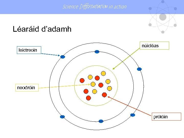 Science Differentiation in action Léaráid d'adamh leictreoin núicléas neodróin prótóin