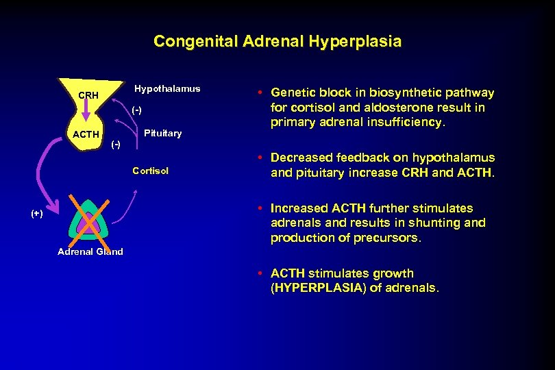 Congenital Adrenal Hyperplasia Hypothalamus CRH (-) ACTH Pituitary • Genetic block in biosynthetic pathway