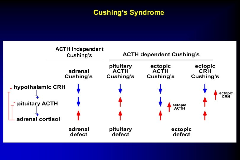 Cushing's Syndrome ACTH independent Cushing's