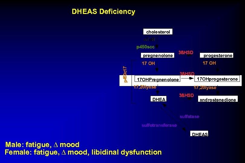 DHEAS Deficiency cholesterol s. Ta. R p 450 scc pregnenolone 3ßHSD progesterone 17 OH