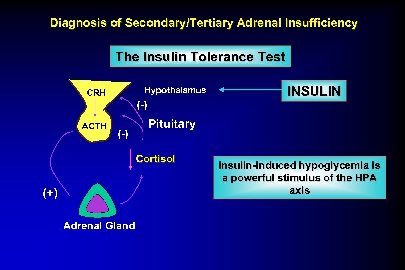 Diagnosis of Secondary/Tertiary Adrenal Insufficiency The Insulin Tolerance Test Hypothalamus CRH (-) ACTH (-)