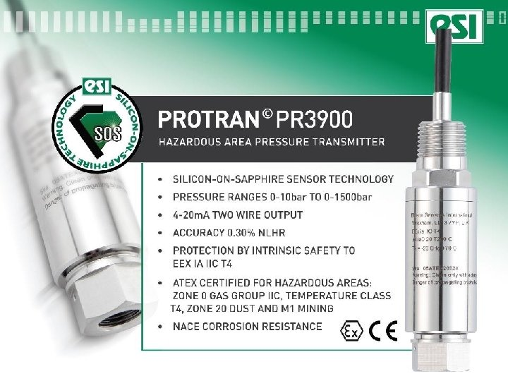 PR 3900 Intrinsically safe