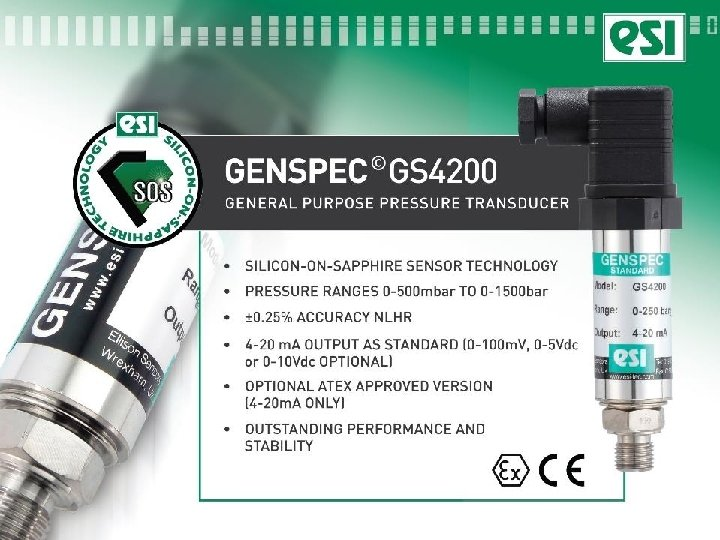 GS 4200 general purpose
