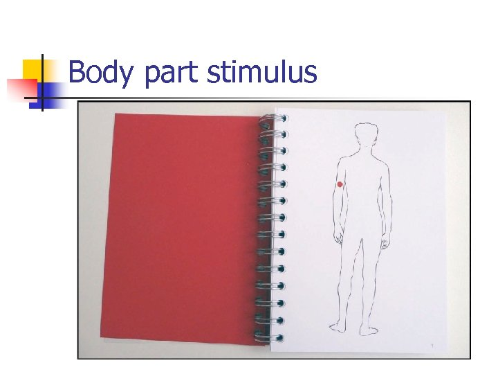 Body part stimulus