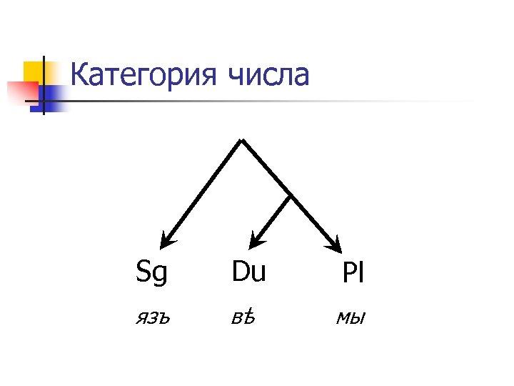 Категория числа Sg Du язъ вѣ Pl мы