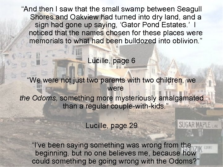 """""""And then I saw that the small swamp between Seagull Shores and Oakview had"""